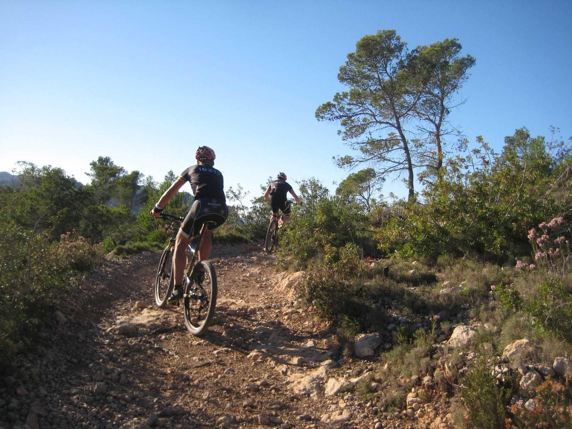 Arrowed cycling roads on Ibiza